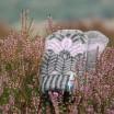 Öjbro Merino Wool Mittens - Iris