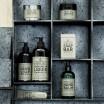 Yard Etc Lemon Nettle Collection