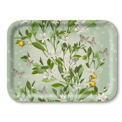 Michael Angove Orange Blossom Breakfast Tray By Jamida
