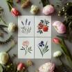 Clap Clap Botanical Card Collection