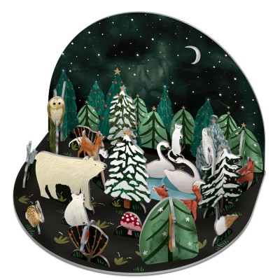 Roger la Borde Northern Lights Pop & Slot Advent Calendar