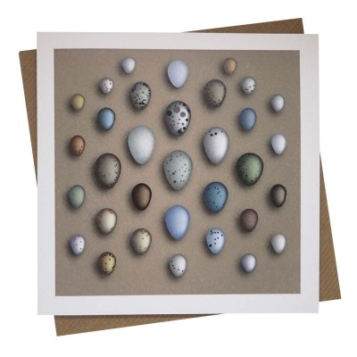 Egg Collection Greeting Card