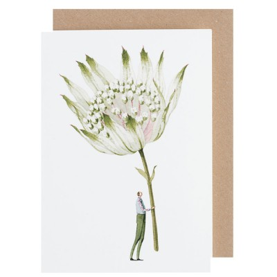 Laura Stoddart Astrantia Greeting Card