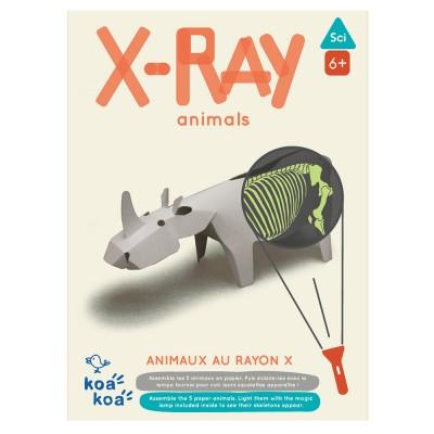 Koa Koa X-Ray Animals Kit