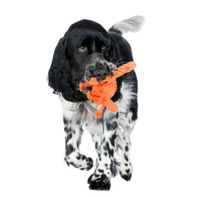 Laboni Kristof Krabbe Dog Toy