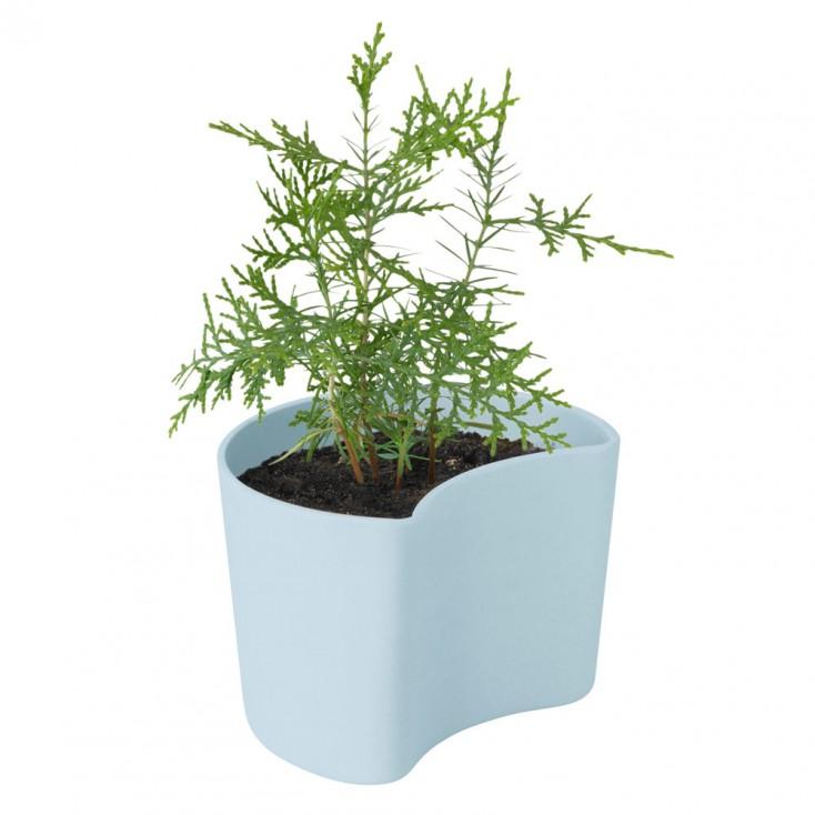 RIG-TIG Your Tree Planting Pot - Blue
