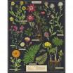 Cavallini & Co Herbarium 1000 Piece Vintage Puzzle