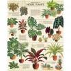 Cavallini & Co House Plants 1000 Piece Vintage Puzzle