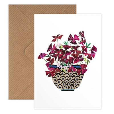 Brie Harrison Greeting Card - Oxalis
