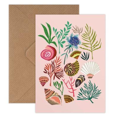 Brie Harrison Greeting Card - Shells & Seaweed