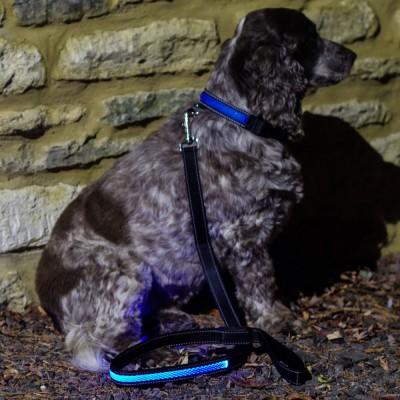 Blue LED Light Up Dog Lead