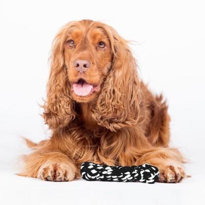 Laboni Bonnie Bone Dog Toy