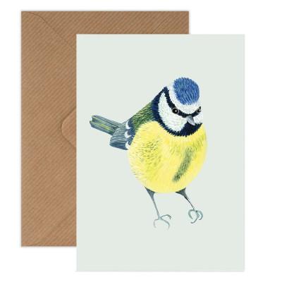 Susie Hamilton Blue Tit Greeting Card