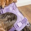 Wild One Dog Harness - Lilac