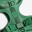 Wild One Dog Harness - Spruce Green