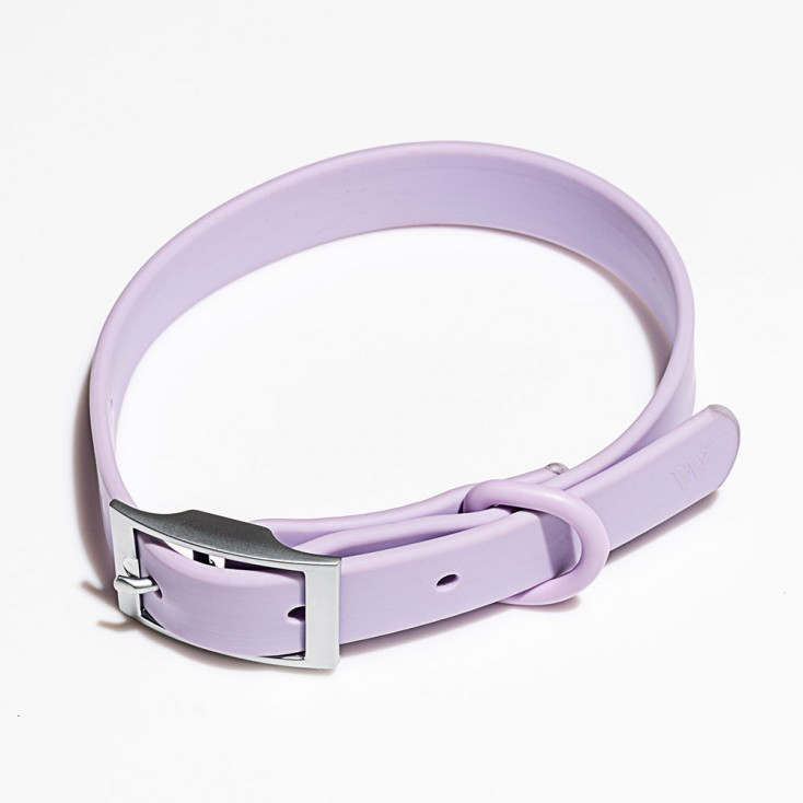 Wild One Dog Collar - Lilac