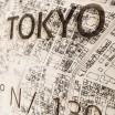 Brandthout Tokyo Wooden Wall Citymap
